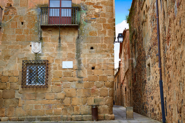 モニュメンタル 市 スペイン 建物 建設 芸術 ストックフォト © lunamarina
