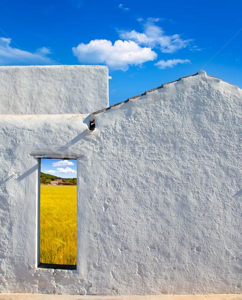 Balearic islands golden wheat field through door Stock photo © lunamarina