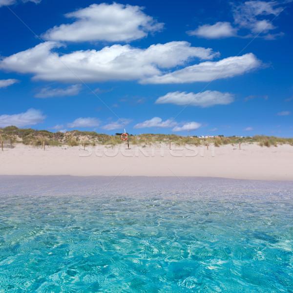 Alaior Cala Son Bou in Menorca turquoise beach at Balearic Stock photo © lunamarina