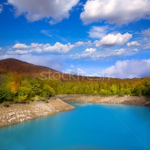 Bataklık İspanya göl su çim doğa Stok fotoğraf © lunamarina