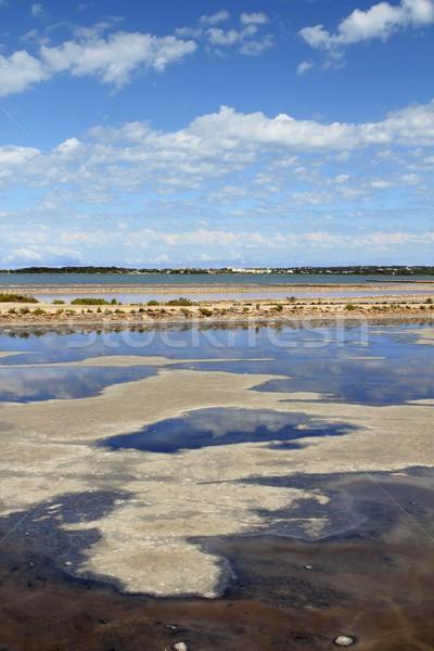 Ses Salines Formentera saltworks horizon balearic Stock photo © lunamarina