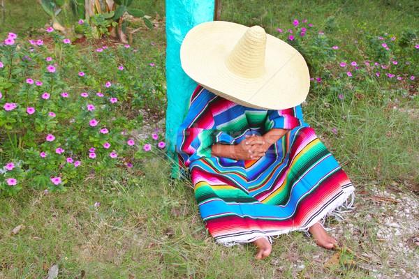Mexican leniwy sombrero hat człowiek drzemka Zdjęcia stock © lunamarina