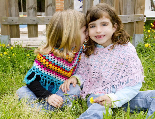 children sister girls whisper in ear meadow spring Stock photo © lunamarina