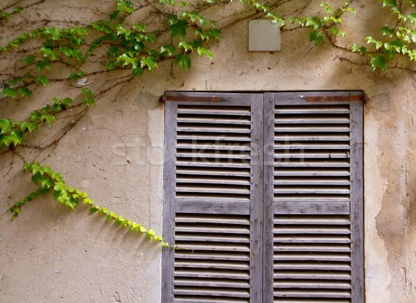 Foto d'archivio: Tradizionale · legno · Windows · casa · muro