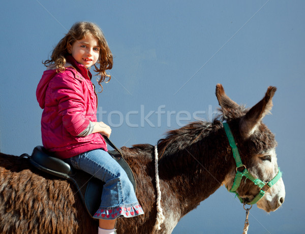 donkey mule with kid little girl riding happy Stock photo © lunamarina