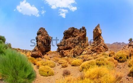 Tenerife park bergen hemel natuur Stockfoto © lunamarina