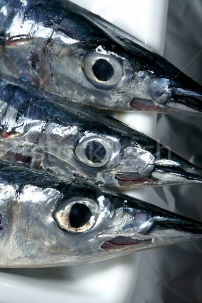 Három tű hal makró stúdiófelvétel kicsi Stock fotó © lunamarina