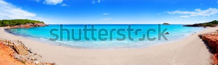 Caribbean Mexico Tulum turquoise tropical beach Stock photo © lunamarina