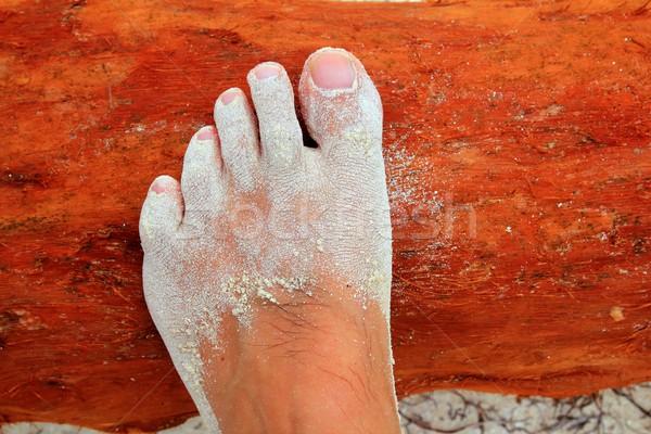 Caribbean white sand in man fee on wood Stock photo © lunamarina