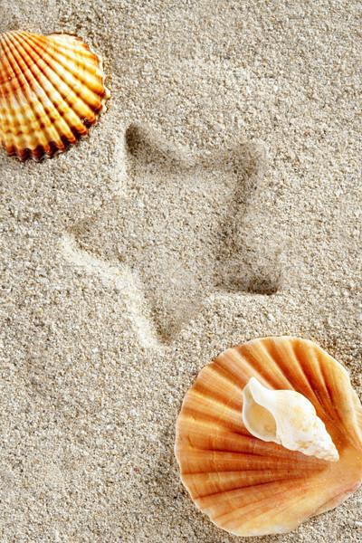 beach sand summer clam shell star print vacation Stock photo © lunamarina