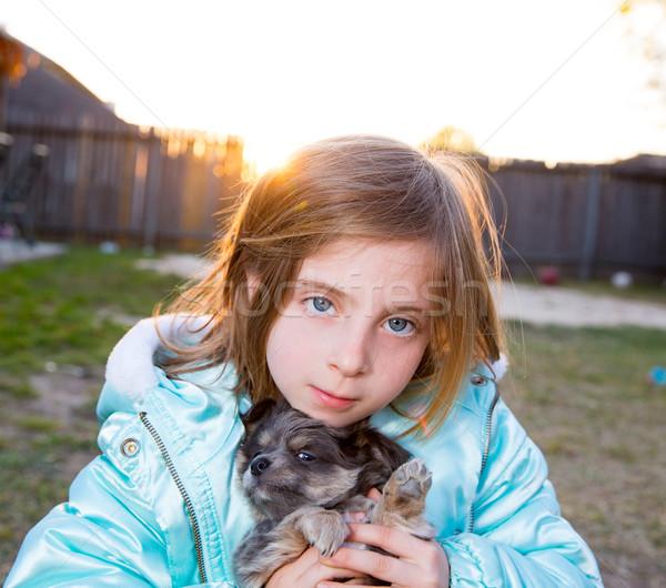Blond children kid girl playing with puppy dog chihuahua Stock photo © lunamarina