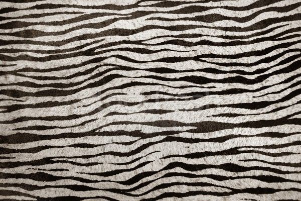 模倣 シマウマ 革 テクスチャ 動物 黒白 ストックフォト © lunamarina