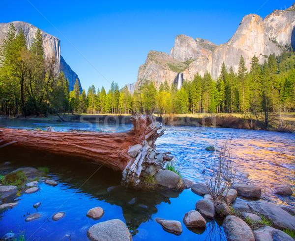Yosemite río mitad cúpula California cielo Foto stock © lunamarina