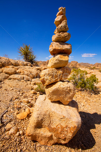 Berg rotsen boom park Californië USA Stockfoto © lunamarina