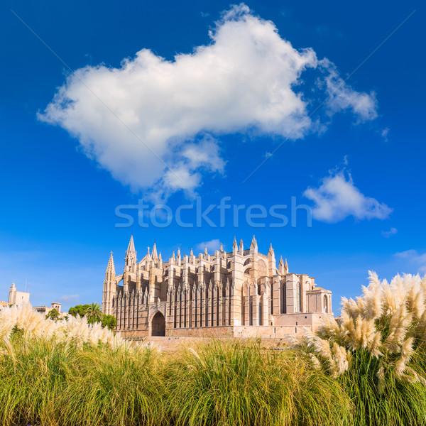 Kathedraal seo majorca eilanden Spanje voorjaar Stockfoto © lunamarina