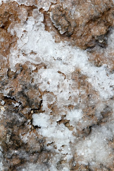 dried salt on floor texture marine background Stock photo © lunamarina
