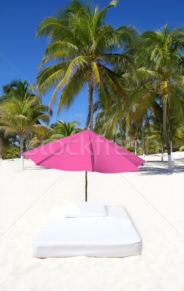 parasol beach tropical umbrella mattress palm trees Stock photo © lunamarina