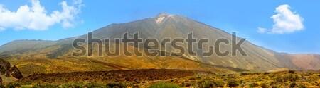 Park dağ tenerife panorama doğa Stok fotoğraf © lunamarina