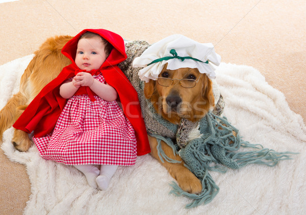 ребенка мало красный верховая езда волка собака Сток-фото © lunamarina