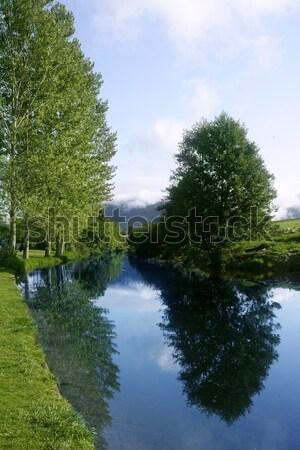 Blue river reflexion in a forest Stock photo © lunamarina
