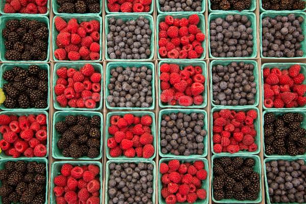 Jagody maliny jagody rząd zielone Zdjęcia stock © lunamarina