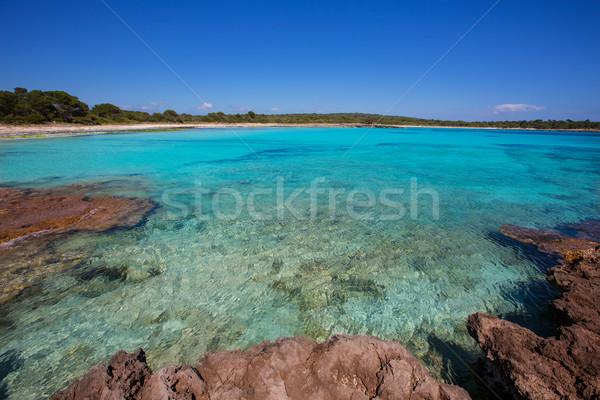 Filho praia turquesa cor céu água Foto stock © lunamarina