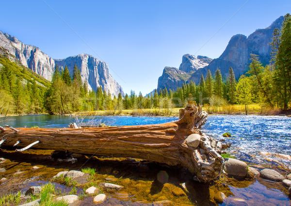 Yosemite Merced River el Capitan and Half Dome Stock photo © lunamarina