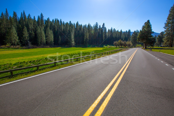 Yosemite Wawona road Route 41 in California Stock photo © lunamarina