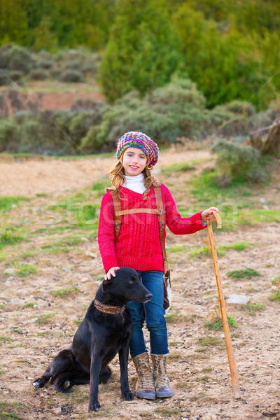 Kid girl shepherdess happy with dog and flock of sheep Stock photo © lunamarina