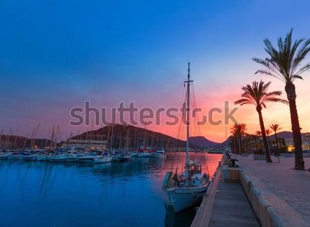 Porta marina pôr do sol Espanha mediterrânico árvore Foto stock © lunamarina