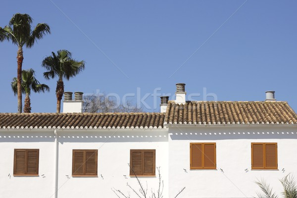 Mediterraneo casa bianca outdoor dettaglio cielo blu palme Foto d'archivio © lunamarina