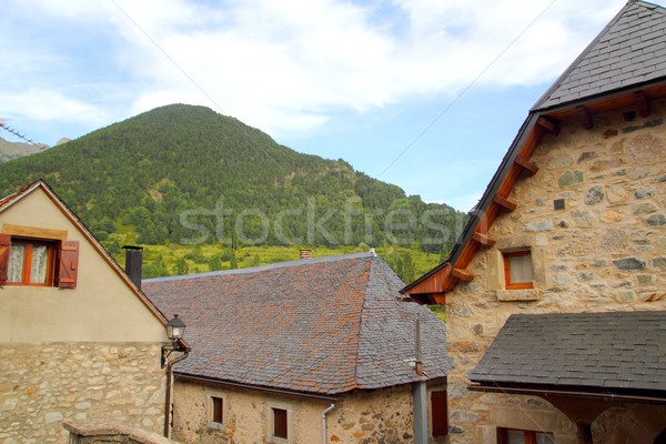 Sallent de Gallego Pyrenees stone village Huesca Stock photo © lunamarina