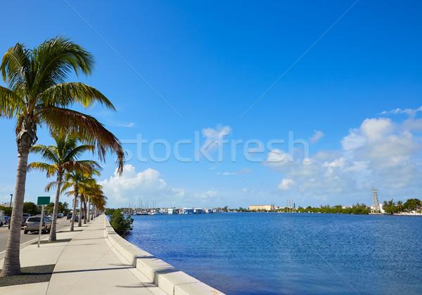 Key West Florida marina Garrison Bight Florida Stock photo © lunamarina
