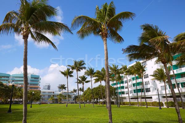 Miami sul praia palmeiras parque Flórida Foto stock © lunamarina