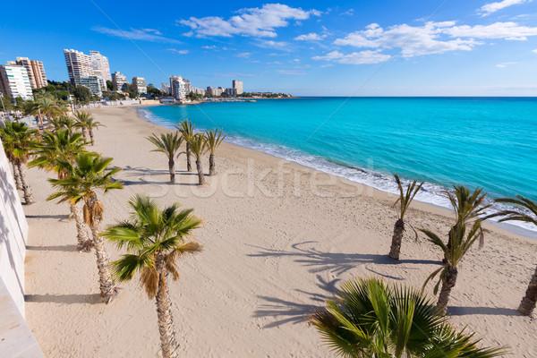 Alicante San Juan beach of La Albufereta with palms trees Stock photo © lunamarina