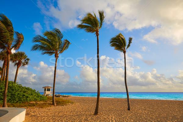 Fort lauderdale praia nascer do sol Flórida manhã EUA Foto stock © lunamarina