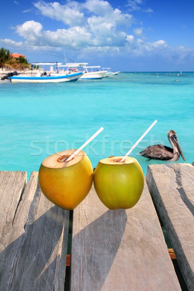 Caribbean fresh coconuts cocktail pelican swimming Stock photo © lunamarina