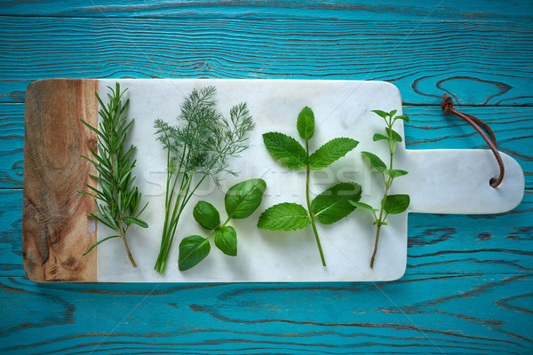 Aromatyczny zioła kulinarny roślin rozmaryn koper Zdjęcia stock © lunamarina