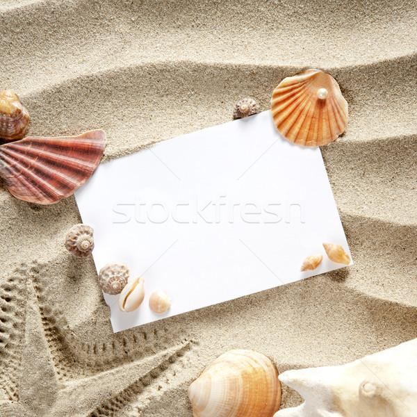 Stok fotoğraf: Bo · yaz · denizyıldızı · kum · kabukları