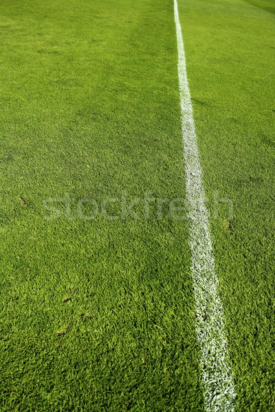 football grass field camp texture wite line Stock photo © lunamarina