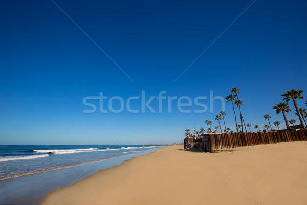 Strand Californië palmbomen sport natuur zee Stockfoto © lunamarina