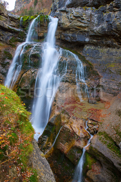 Cascada de la Cueva waterfall Ordesa valley Pyrenees Spain Stock photo © lunamarina
