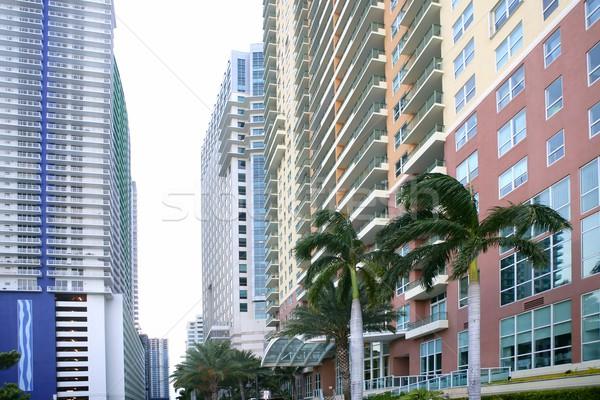 Stock fotó: Miami · belváros · város · színes · épületek · pálmafák