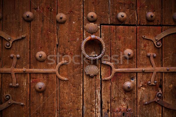 Zamora detail of old aged wood door in Spain Stock photo © lunamarina
