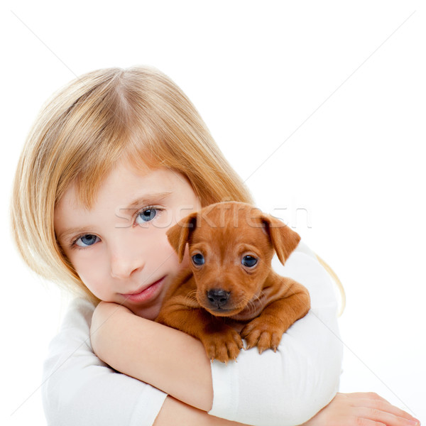 Blond children girl with dog puppy mini pinscher Stock photo © lunamarina