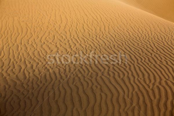 Desert sand dunes in Maspalomas Gran Canaria Stock photo © lunamarina