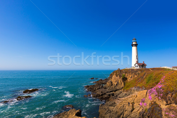 California Pigeon point Lighthouse in Cabrillo Hwy coastal hwy 1 Stock photo © lunamarina