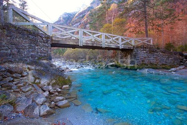 Arazas river Valle de Ordesa valley Pyrenees Huesca Spain Stock photo © lunamarina