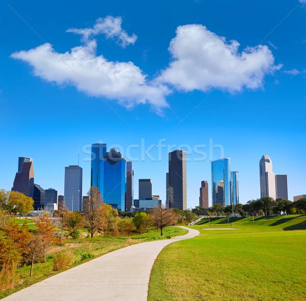 Houston horizonte parque hierba Texas Foto stock © lunamarina