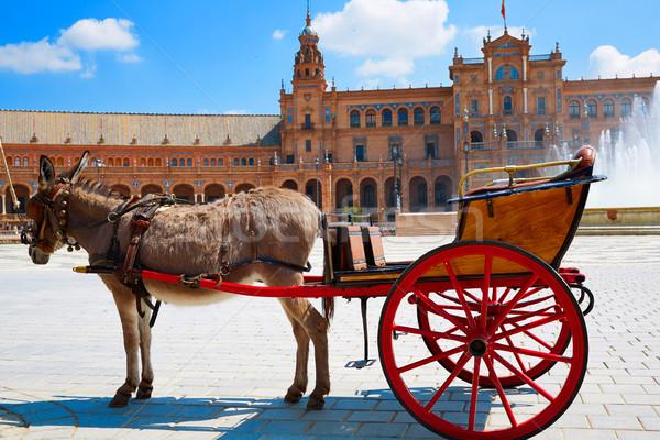 Spagna asino trasporto piazza città viaggio Foto d'archivio © lunamarina